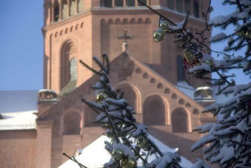 Verschneiter Weihnachtsbaum vor dem Mainzer Dom