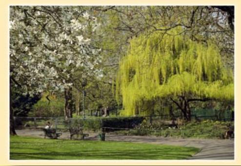 Frühling im Mainzer Stadtpark