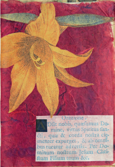 Adsit nobis virtus Spiritus sancti