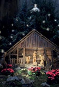 Die Weihnachtskrippe im Mainzer Dom